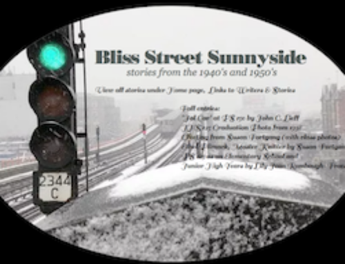 Sunnyside Stories Website
